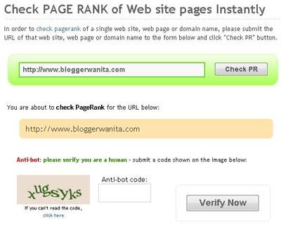Cara Mudah Check Google Pagerank blog Anda