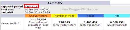 Statistik Bloggerwanita.com 2011