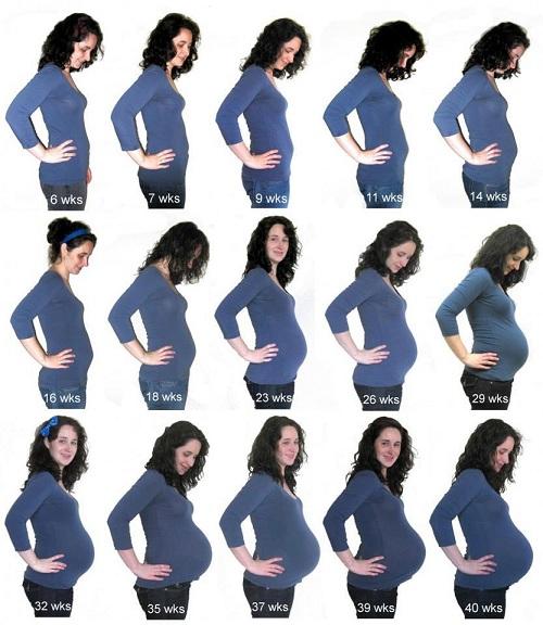 Gambar Pembesaran Rahim Ibu Hamil