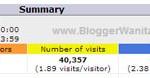 Statistik BloggerWanita.com April 2013