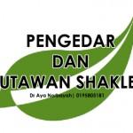 Pengedar Shaklee dan Jutawan Shaklee